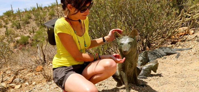 L'Arizona Sonora Desert museum, LE zoo du désert