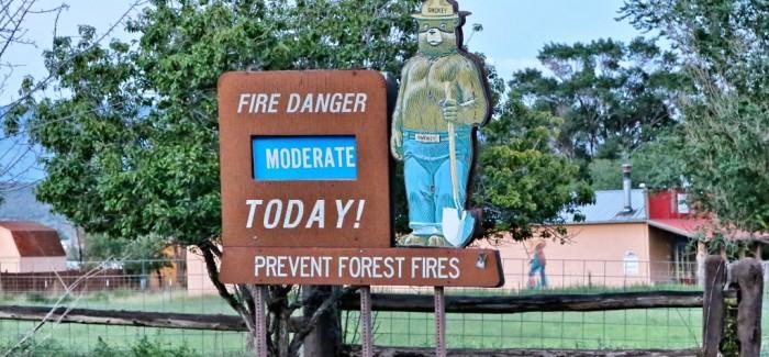 Smokey, l'ours qui fait la «météo» du feu aux Etats-Unis