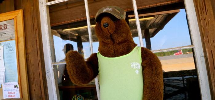 C'est là qu'est né Teddy bear