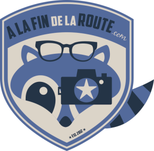 Logo-Roadie-bleu